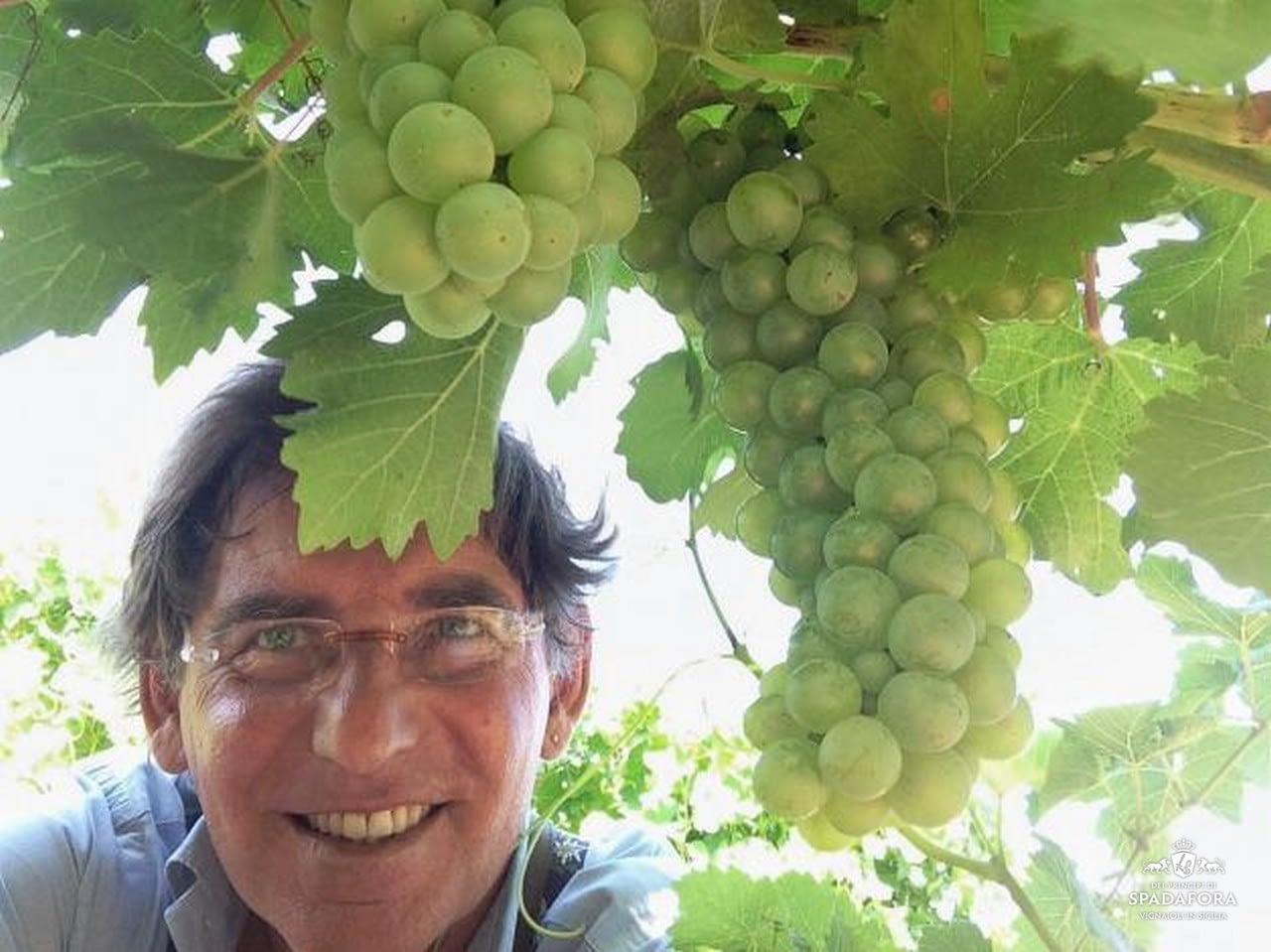 Dei-principi-di-spadafora-vino-bio-italiano